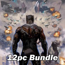 BLACK PANTHER #25 REG AND VARIANT BUNDLE