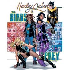 HARLEY QUINN AND THE BIRDS OF PREY #4 (OF 4) CVR A AMANDA CONNER (MR)