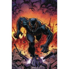 RISE OF BLACK PANTHER #6 (OF 6) ADAMS VARIANT