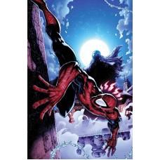 PETER PARKER SPECTACULAR SPIDER-MAN #311