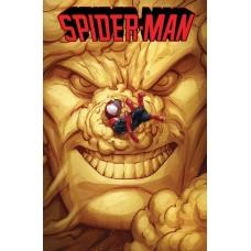 SPIDER-MAN #237 LEGACY