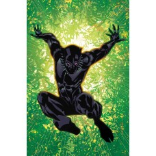 BLACK PANTHER ANNUAL #1 STELFREEZE VARIANT LEGACY