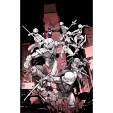 POWER RANGERS TEENAGE MUTANT NINJA TURTLES B&W HC (C: 1-1-2)