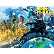 DF BLACK PANTHER #1 CGC GRADED (C: 0-1-2)