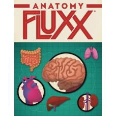 ANATOMY FLUXX DIS (6CT)