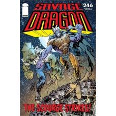 SAVAGE DRAGON #246 (MR)