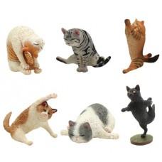 ANIMAL LIFE YOGA CAT 8PC BMB DIS
