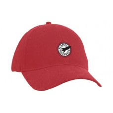 FUTURAMA PLANET EXPRESS DAD HAT