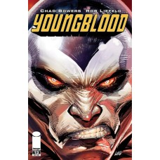 YOUNGBLOOD #13 CVR A LIEFLED