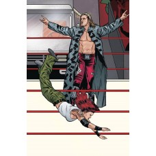 WWE #19 SCHOONOVER RAW CONNECTING VARIANT