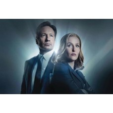 X-FILES SEASON 10 & 11 T/C BOX