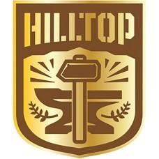 WALKING DEAD HILLTOP FACTION PIN