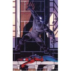 PETER PARKER SPECTACULAR SPIDER-MAN #298 LEGACY