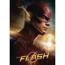 FLASH ULTIMATE GUIDEBOOK HC