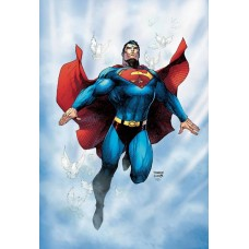 SUPERMAN FOR TOMORROW 15TH ANNIV DLX ED HC @D
