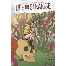LIFE IS STRANGE PARTNERS IN TIME #2 CVR A LEONARDI (MR)