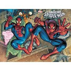 DF AMAZING SPIDER-MAN #75 CGC GRADED (C: 0-1-2)